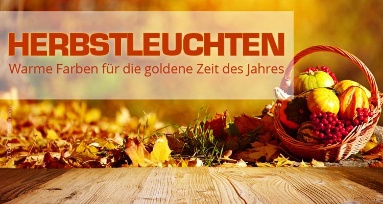 Herbstdeko – Unsere Bestenliste